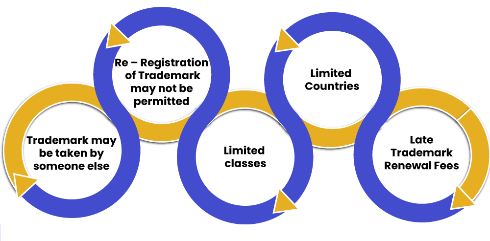 Risks in Late Trademark Renewal