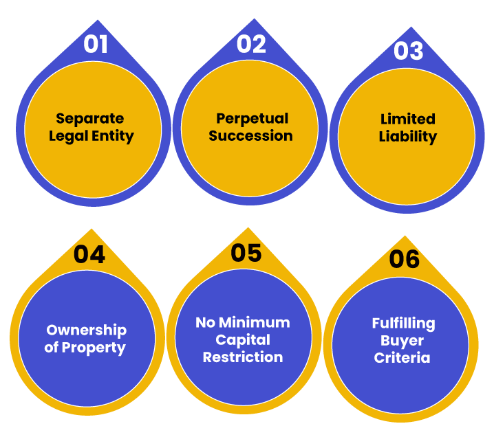 Benefits of Private Limited Company Registration in Maharashtra