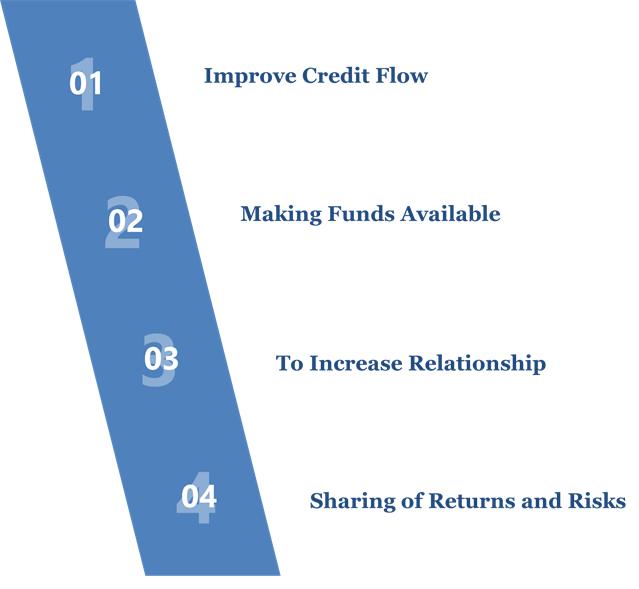 Objectives of the Co-Lending Model