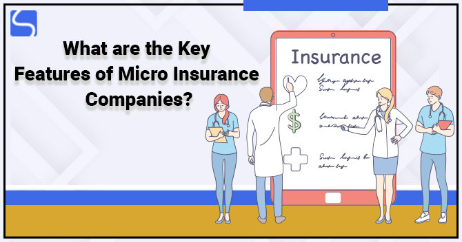 What are the Key Features of Micro Insurance Companies?