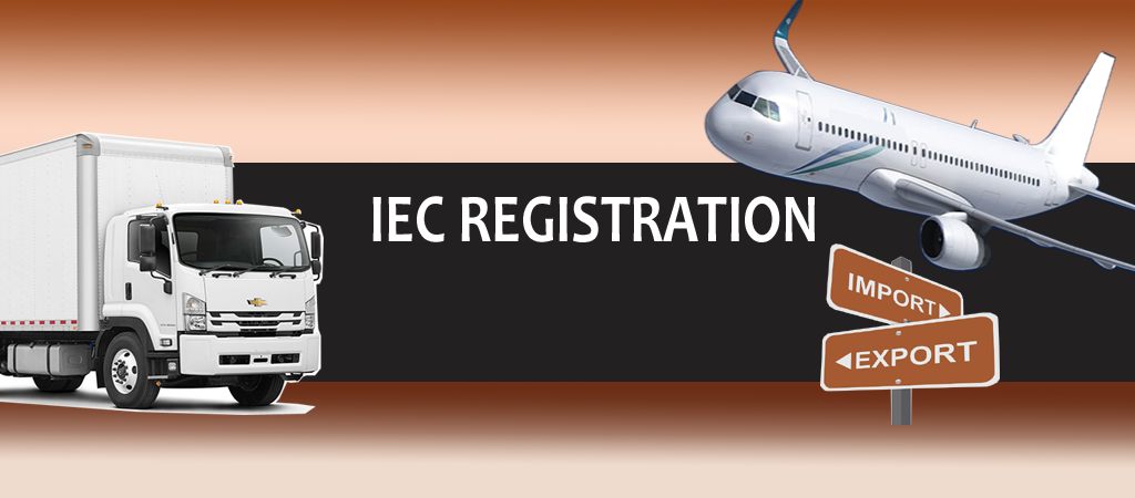 Take your Business Global with IEC Code License