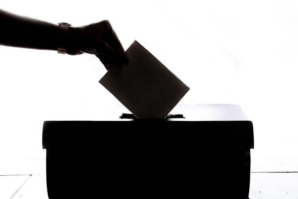 Non-Citizens Voting Rights