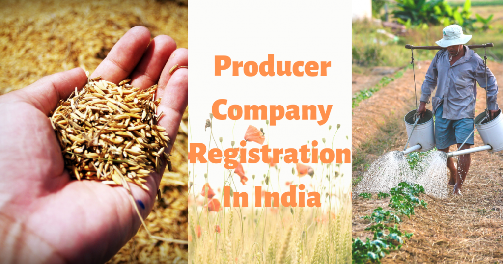 how to apply for Producer Company Registration in India