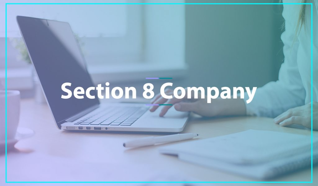 What are the Advantages and Disadvantages of Section 8 Company?