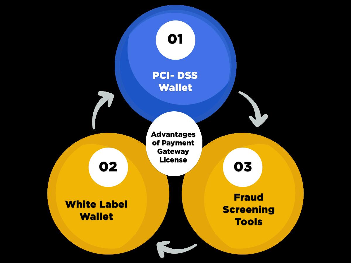 Advantage of payment gateway license