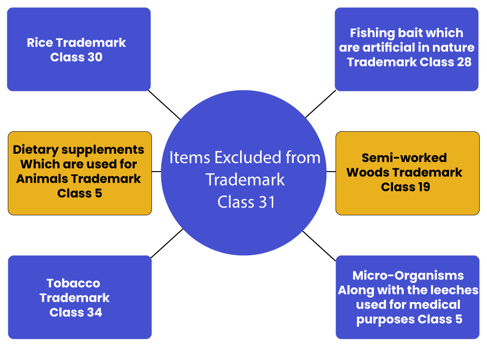 Items Excluded Trademark Class 31