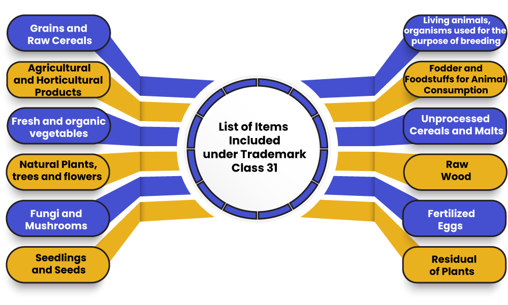 Trademark Class 31 Items Included